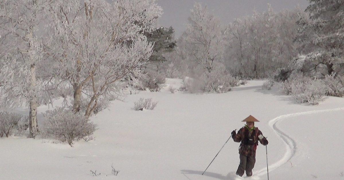 粉雪をけちらして滑ります