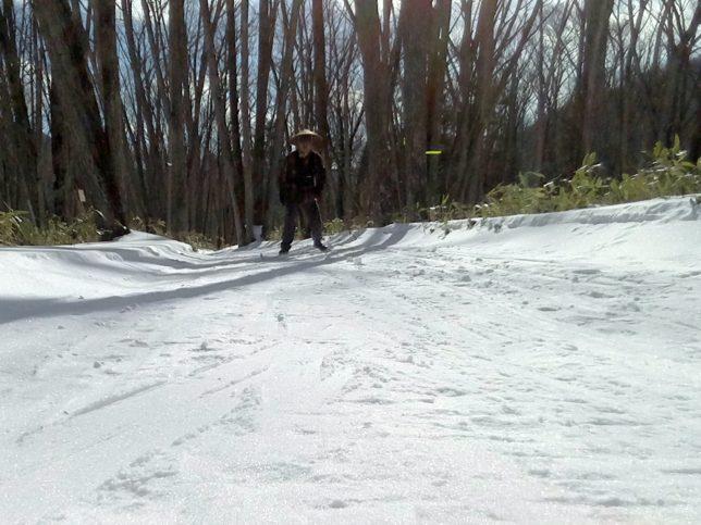 コースは快適に滑れました