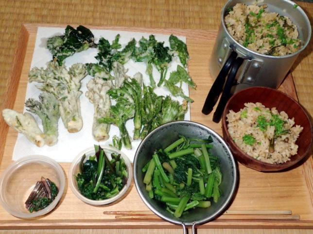 夕食は山菜てんこ盛り