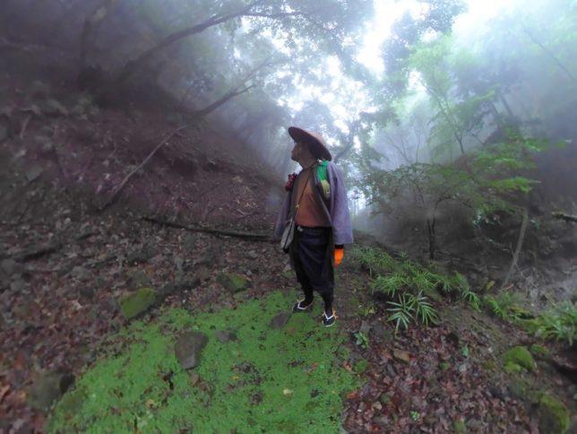 林道跡が残ってました