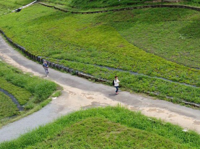 芝桜の丘を歩きました