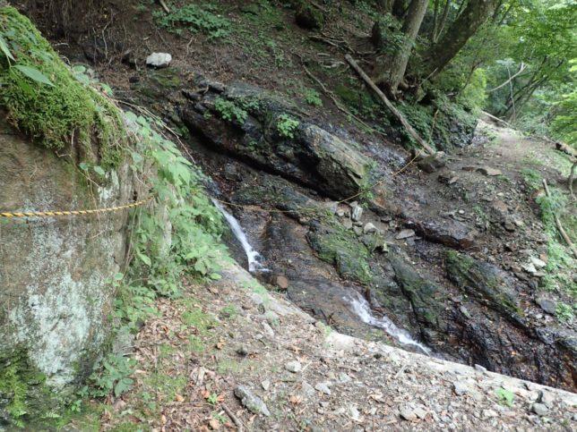 森林軌道跡は橋が落ちてたけど、ロープが張られてました
