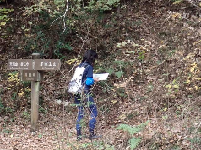 藪の急斜面を登る受験者