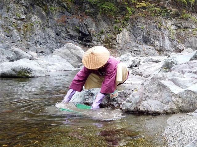 さらった土を水に浸け比重選鉱します