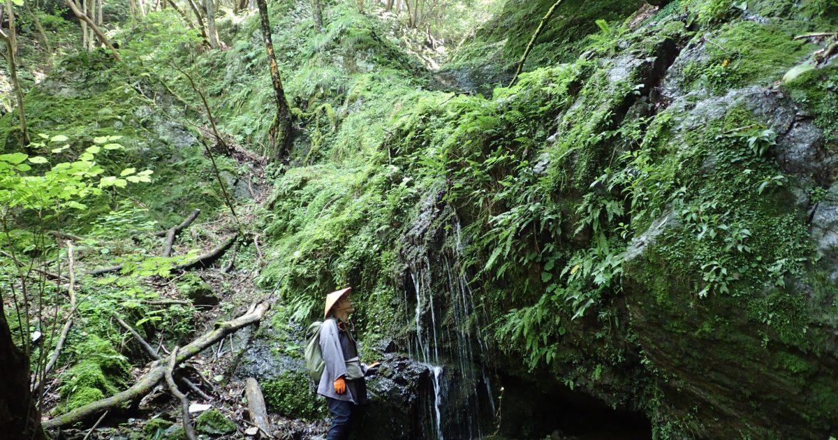 最大の難所は源流部の滝
